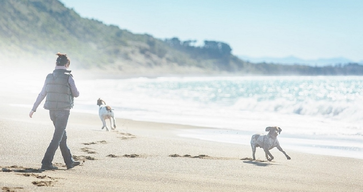 Fi Turner with dogs at beach
